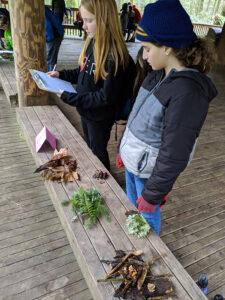 2019 Fieldwork, 4-5 Grades