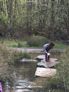 Kinder Fieldwork May 2019