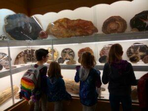 3rd grade rock museum